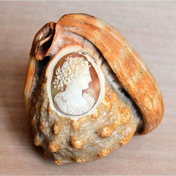 Camée sculpté sur coquillage